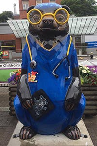 Big Sleuth Bear Image - Dr Bear Brawn 200x300