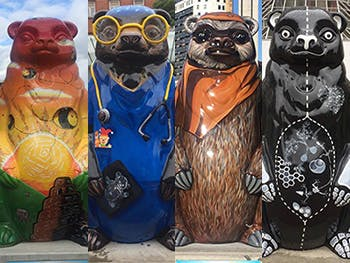 Big Sleuth Main Image 350x263 - Pictures of four of the bear statues side by side
