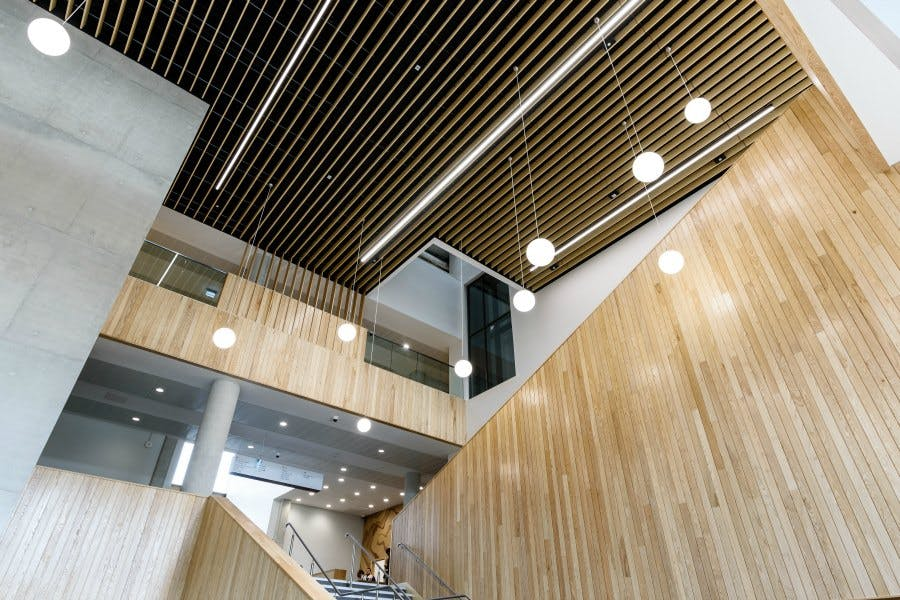 New Conservatoire Gallery Image 5