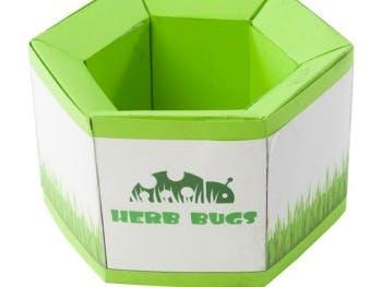 Herb Bugs Box
