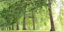 环境和可持续性
