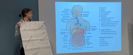 dietetics presentation
