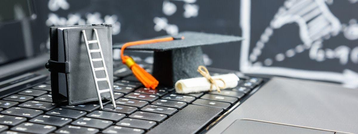 Employability blog image