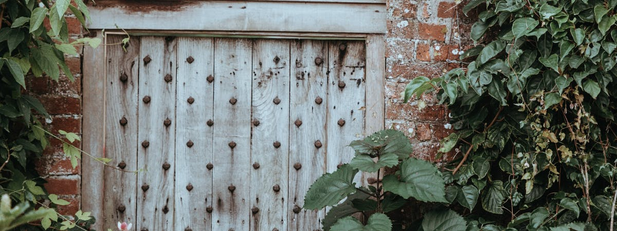Old garden gate to a walled garden surrounded by plants and leaves
