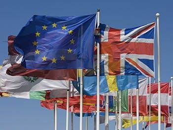 Centre for Brexit Studies International Politics Image 350x263 - EU Flags