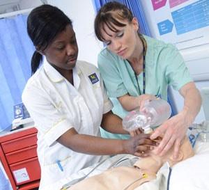 mentorship in nursing practice essay