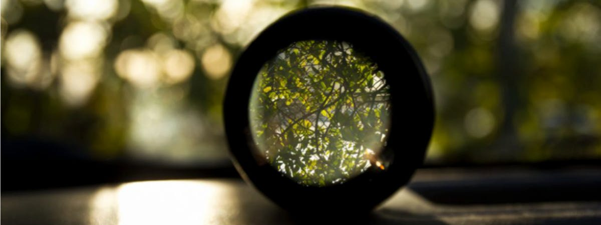 A glass lens looking out onto trees