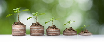 Business PhDs Homepage Image 341x140 - Plants growing on top of piles of coins