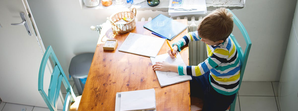 SEND homeschooling project secondary