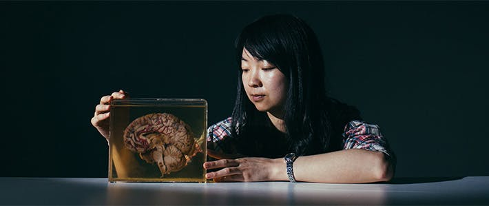 Social Sciences School - 10 Reasons Why Image 710x299 - Woman looking at a brain