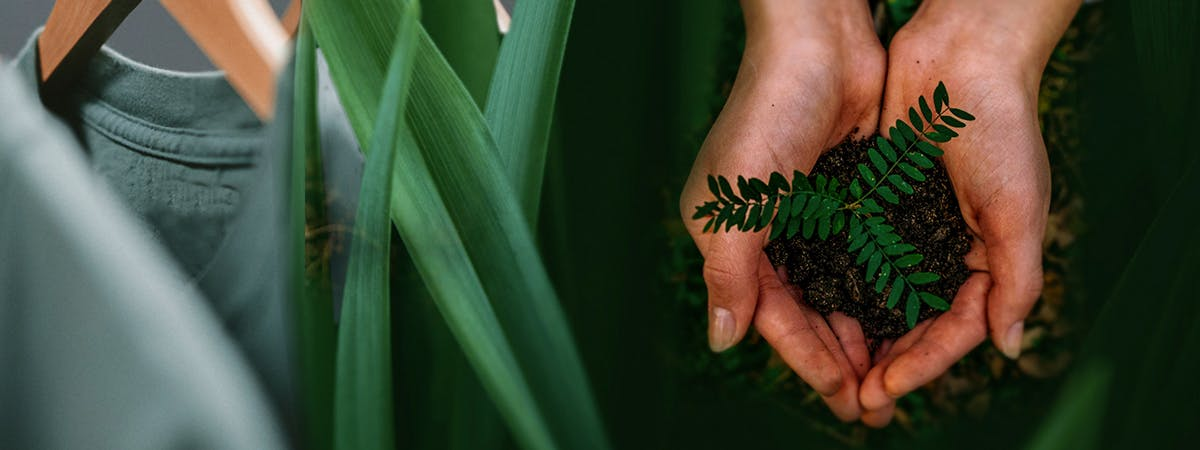 Image of a rack of clothing, plant leaves and hands holding soil with a plant seedling