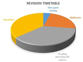 time spent revising image 1
