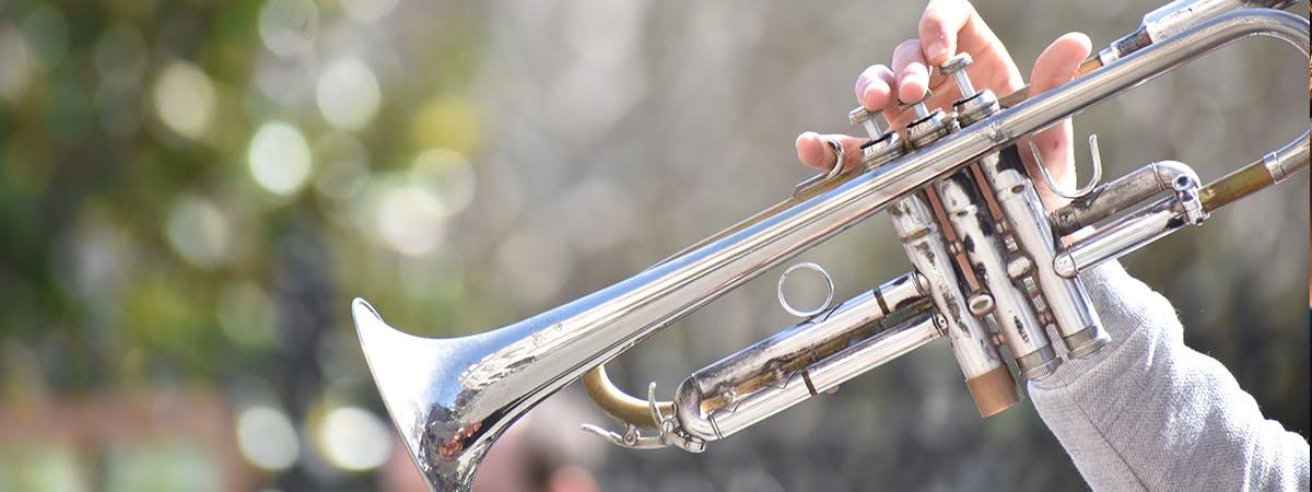 trumpet large