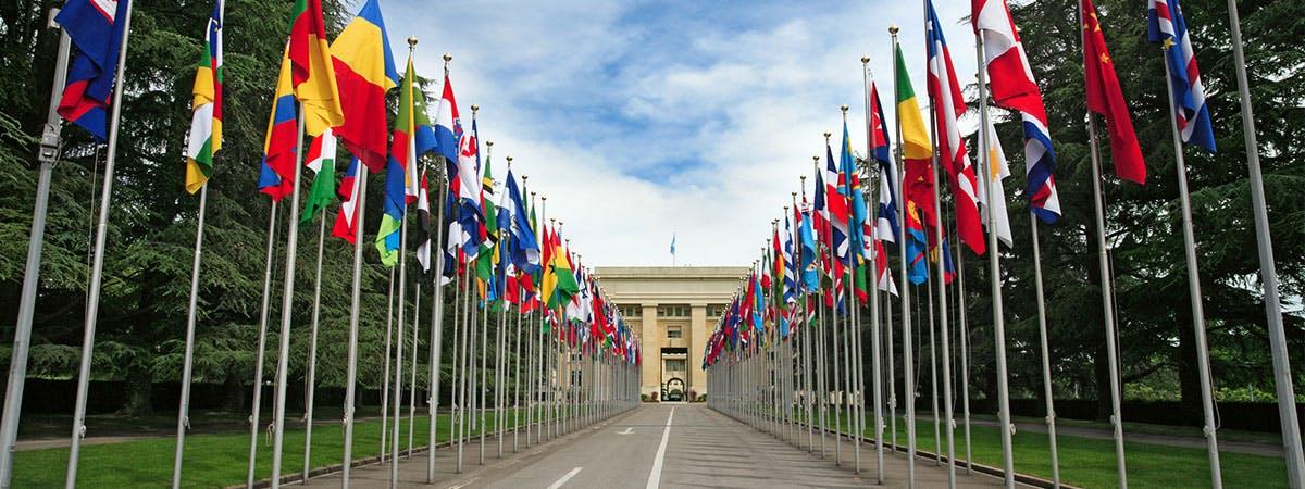 UN Geneva UPR project